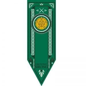 game of thrones stark flag